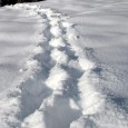 Ahnataler Winterlaufserie 2. Lauf